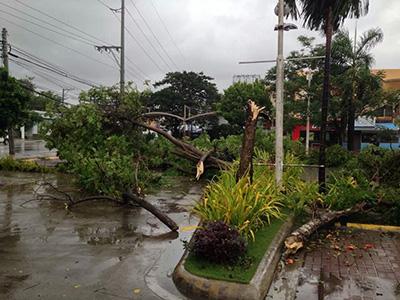 フィリピン セブ台風の様子その1