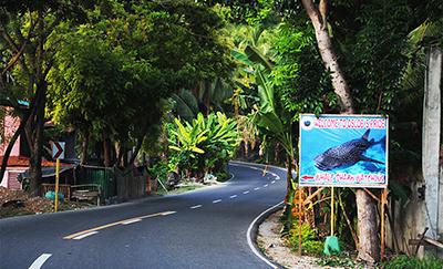 フィリピン セブオスロブの町